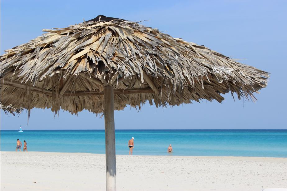 Les différentes raisons de passer des vacances en famille dans les Antilles