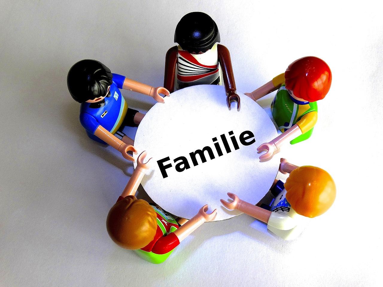 rôle d'un thérapeute familial